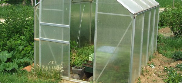 Compare types of glass plastic greenhouse for Materials to make a greenhouse