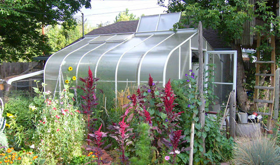 greenhouse with open roof panel